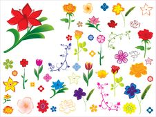 Free Flower Collection Royalty Free Stock Photography - 15990497