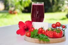 Free Breakfast In The Nature Royalty Free Stock Photos - 15991208