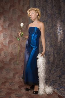 Free Woman In A Dark Blue Dress With A White Rose Royalty Free Stock Image - 15991886