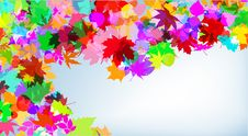 Free Autumn Colorful Background Royalty Free Stock Photography - 15991887
