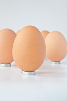 Free Egg Standing Stock Photos - 15998683