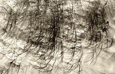 Free Sand Dunes 2 Royalty Free Stock Photos - 162448