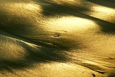 Free Golden Beach Royalty Free Stock Photos - 169068