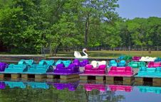 Free Paddle Boats Stock Photos - 169233
