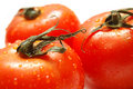Free Fresh Ripe Tomatoes Royalty Free Stock Images - 1605589