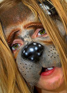 Free Boy-dog Royalty Free Stock Photo - 1600415