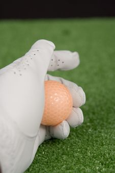 Free Picture Of A Golf Gloved Hand Royalty Free Stock Photos - 1603318