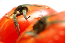 Free Fresh Ripe Tomatoes Stock Photography - 1605592