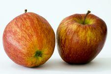 Free Apple Stock Photos - 1606753