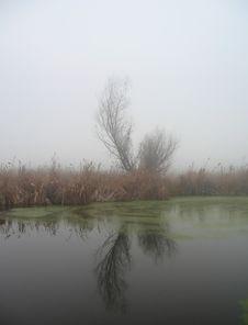 Free November Fog Stock Photography - 1607132