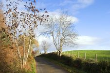 Free Country Lane Royalty Free Stock Image - 1607516