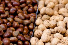 Free Nuts To You Royalty Free Stock Photos - 1607958