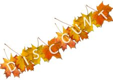Autumn Leaf For Sale Stock Photography