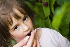 Free Little Girl With Berries Royalty Free Stock Photography - 16001367