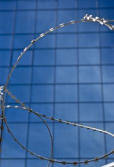 Barbed Wire On A Background Of Office Building Royalty Free Stock Images