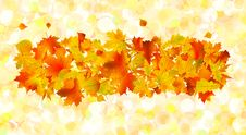 Free Autumn Background Stock Photos - 16002073