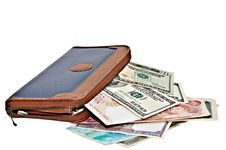 Free Large Wallet With Currency Stock Photos - 16002743