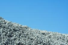 Free Granite Stone Pile With Blue Sky Royalty Free Stock Images - 16003839