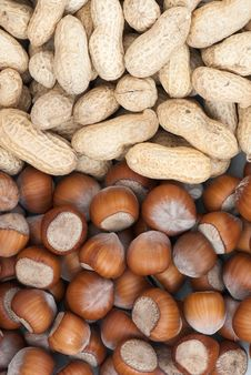 Free Nut Stock Image - 16004211