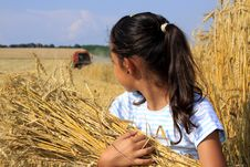 Free Young Gypsy Girl On A Grain Field Stock Photo - 16006310