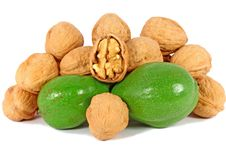 Free Ripe And Unripe Walnuts Stock Photos - 16008963