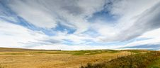Pasturelands In The Heat Of Summer Royalty Free Stock Image