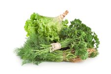Free Parsley And Other Green Royalty Free Stock Photography - 16012967