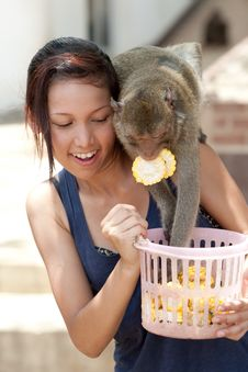 Free Girl With Monkey Royalty Free Stock Photography - 16016127