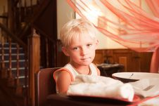 Free Portrait Of The Little Boy Royalty Free Stock Photography - 16016547