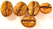 Free Coffee Beans Stock Photo - 16019210