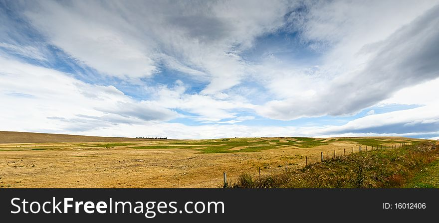 Pasturelands in the heat of summer