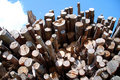 Free Wood Pile Royalty Free Stock Photos - 16021288