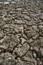Free Dry Soil Royalty Free Stock Photos - 16024938