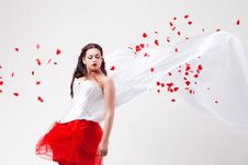 Free Young Beautiful Woman With Petals Of Roses Stock Photography - 16020132