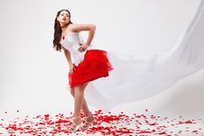 Free Young Beautiful Woman With Petals Of Roses Royalty Free Stock Photography - 16020207