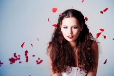 Free Young Beautiful Woman With Petals Of Roses Royalty Free Stock Image - 16020316