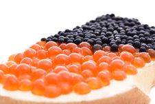 Sandwich With Caviar Royalty Free Stock Images