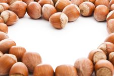 Free Hazelnuts Stock Photos - 16020653