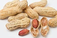 Free Peanuts Stock Photos - 16020893