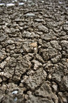 Free Dry Soil Royalty Free Stock Photos - 16024938