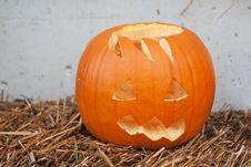 Free Halloween Pumpkin Royalty Free Stock Image - 16026586