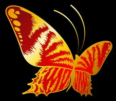 Free Beautiful Butterfly For A Design Stock Photography - 16027162