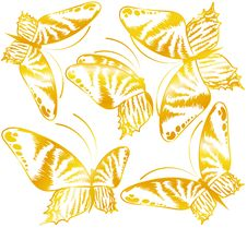 Free Beautiful Butterfly For A Design Royalty Free Stock Photography - 16027207