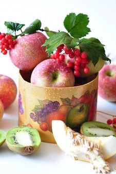 Viburnum And Fruit Stock Photos