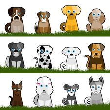 Free Cute Dogs Royalty Free Stock Images - 16034779