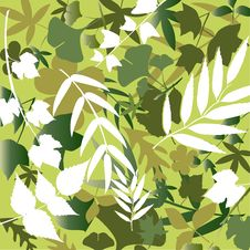 Free Leaf Background Royalty Free Stock Photography - 16034787