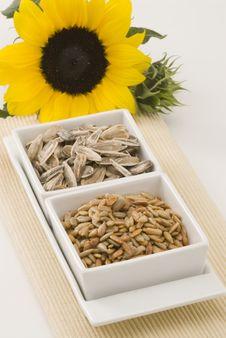 Free Sunflower. Stock Photo - 16036030