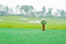 Free Golf In Grass Royalty Free Stock Photo - 16036635