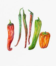 Red, Green And Orange Peppers And Chillies. Stock Images