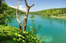 Free Beautiful Lake In Croatia Stock Image - 16038441